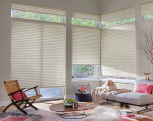 Types Of Window Shades And How To Purchase Them All About Blinds